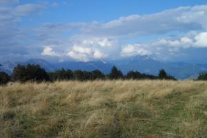 Trek Salam Montagne - Vercors - plateau Sornin - prairie espace ouvert pâturage