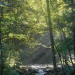 vercors-rif-bruyant-riviere-rayon-de-soleil-treks-salam-montagne